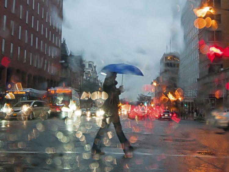 nat geo umbrella